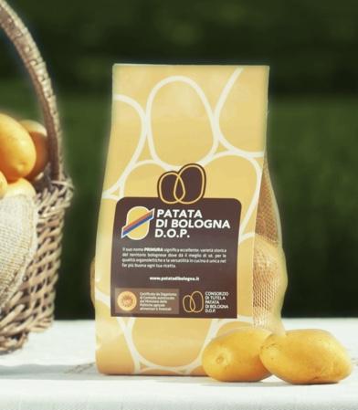 Patata di Bologna DOP - la coltivazione - 6